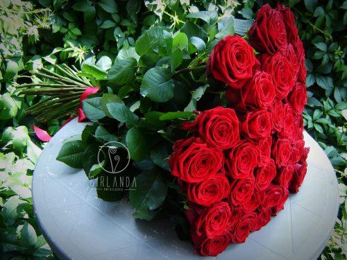 Bukiet 50 czerwonych róż ze wstążką